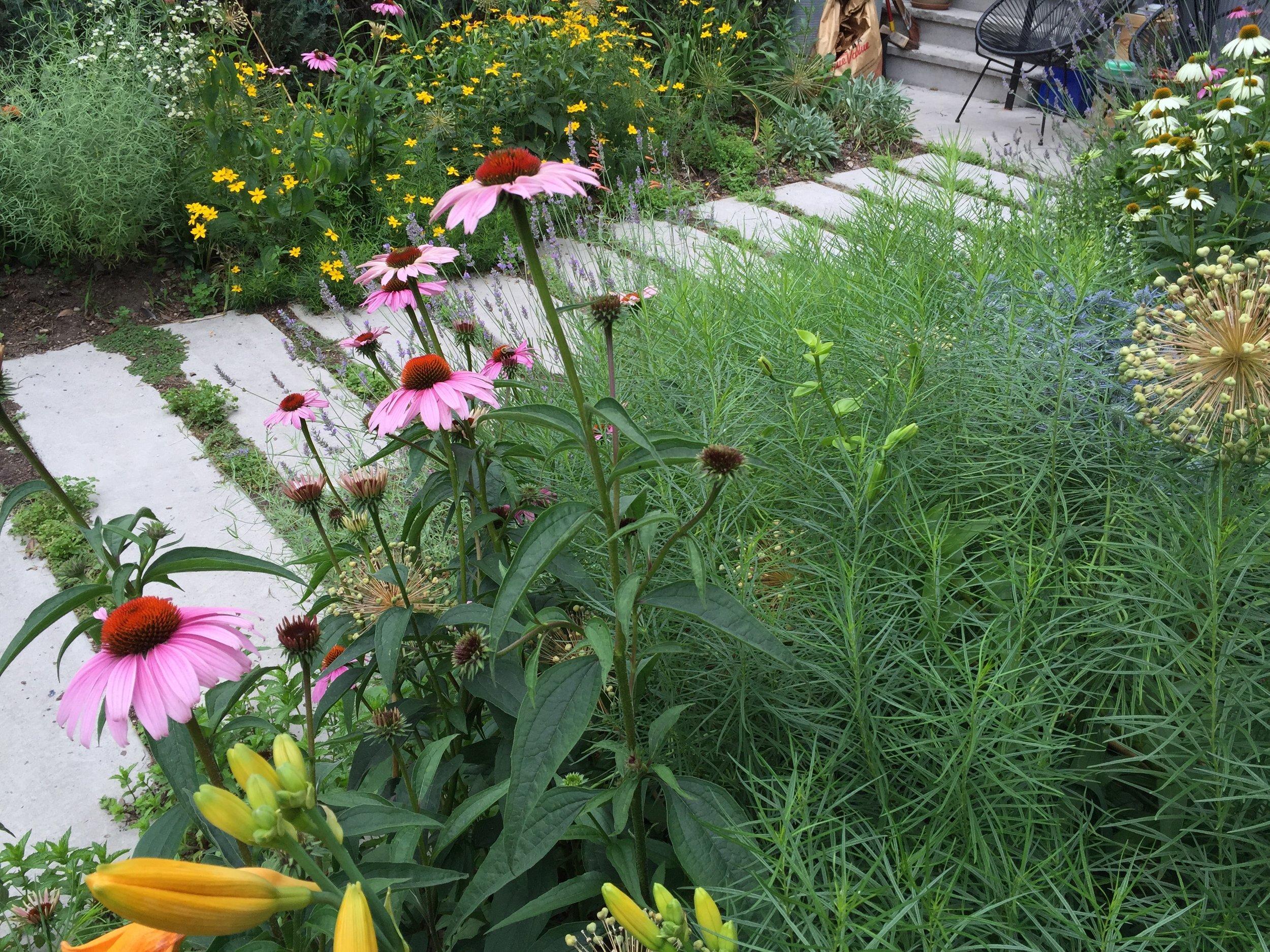 brooklyn_plant_studio_garden_13.jpg