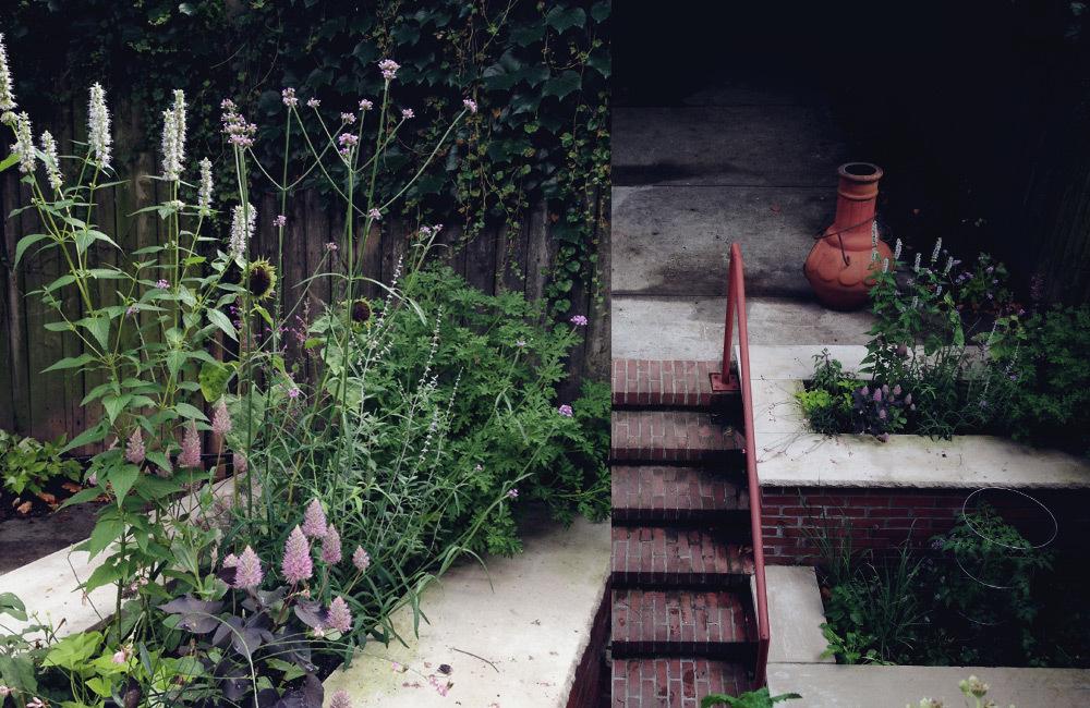brooklyn_plant_studio_garden_15.jpg