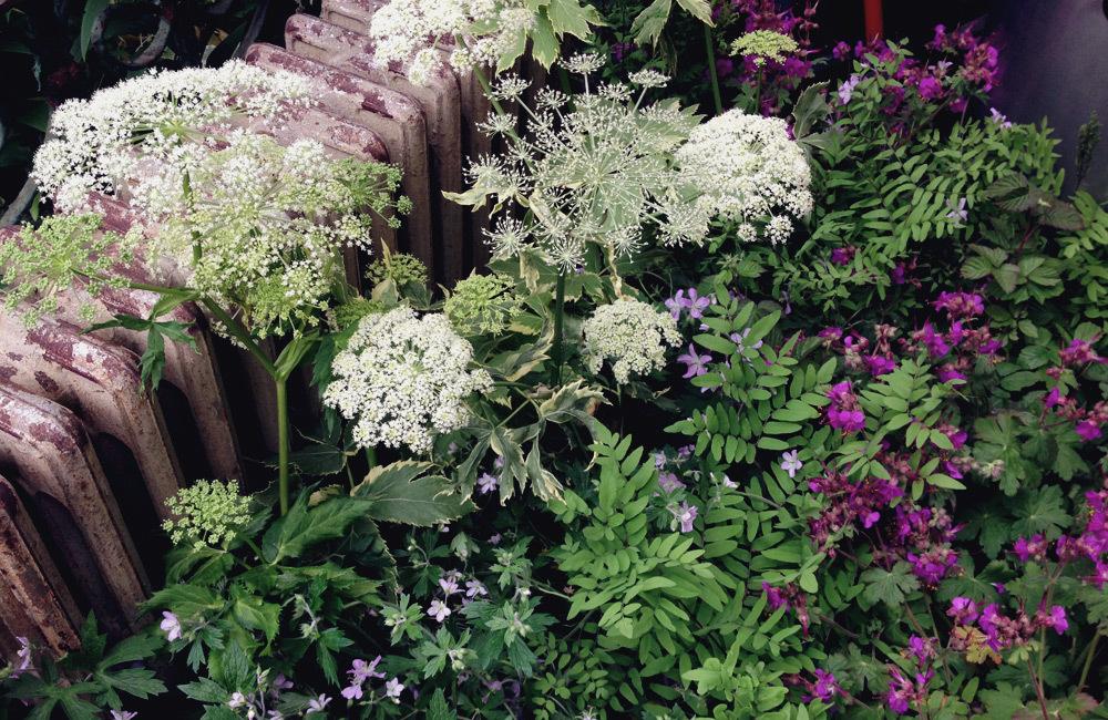 brooklyn_plant_studio_garden_17.jpg