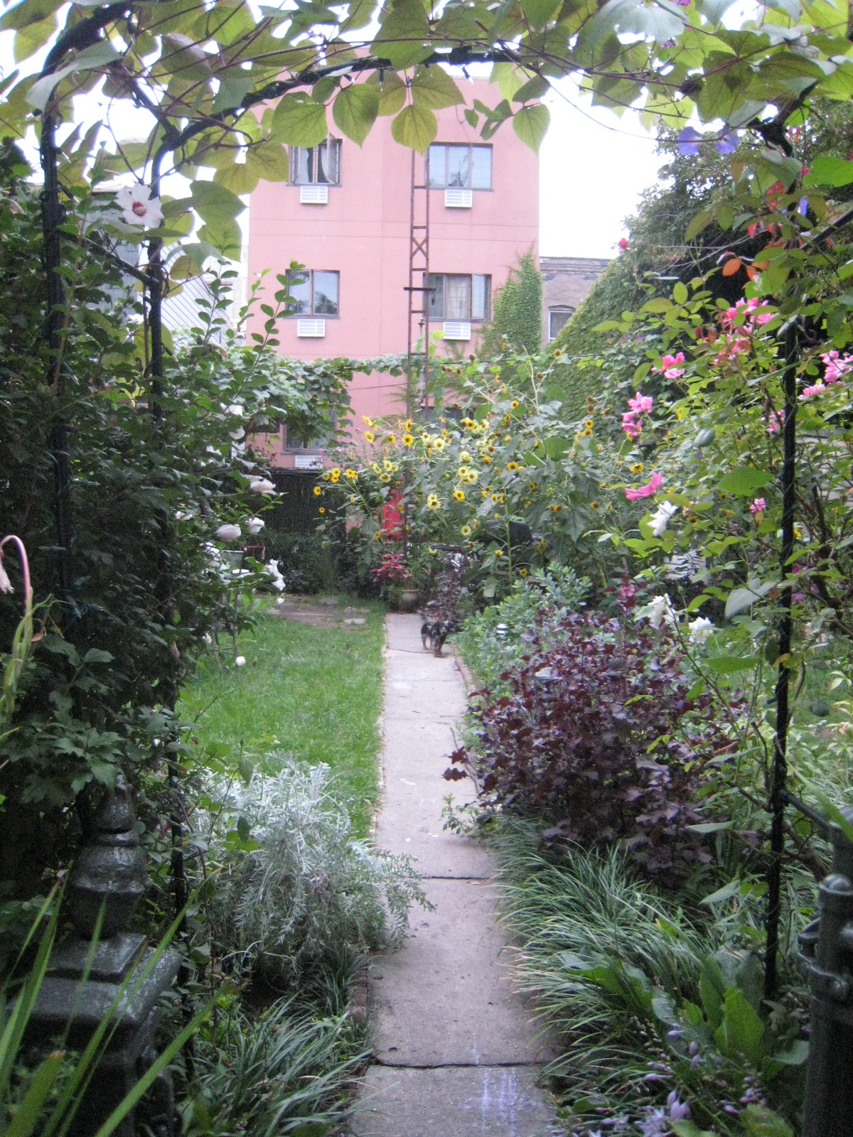 brooklyn_plant_studio_garden_20.jpg