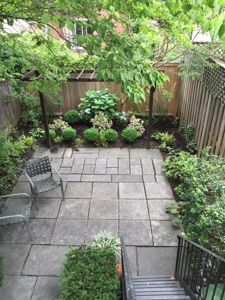 brooklyn_plant_studio_garden_79.jpg