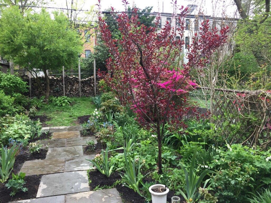 brooklyn_plant_studio_garden_104.jpg
