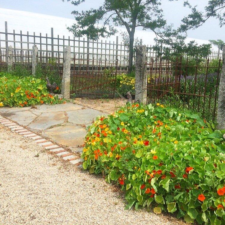 brooklyn_plant_studio_garden_107.jpg