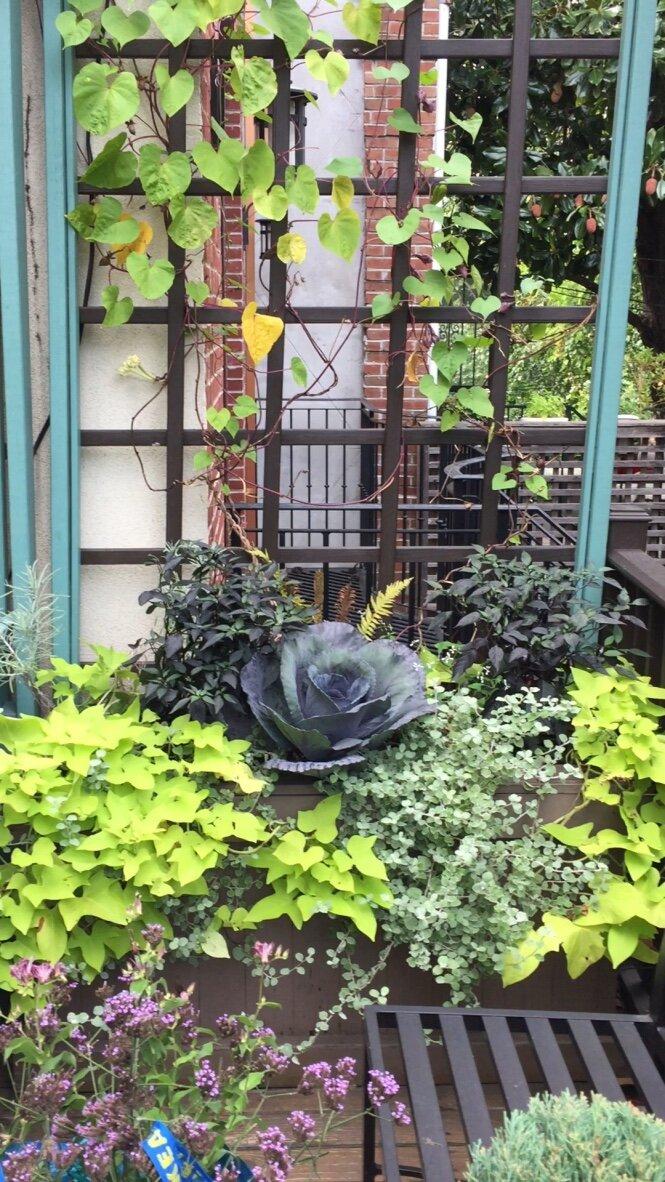 brooklyn_plant_studio_garden_112.jpg