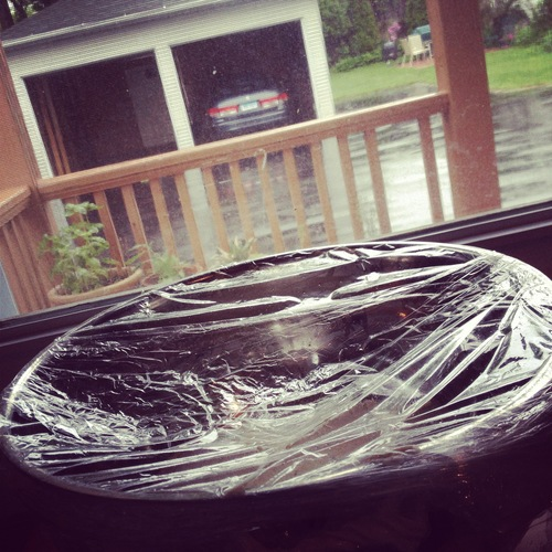 Folded side down, return it to the bowl, and plastic wrap it for a 3rd time. Set aside for 45 minutes.      Sit by the window and watch the rain.