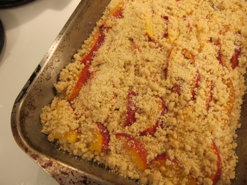 Sprinkle the rest of the crumb mixture atop the peaches. Bake at 375 for 35 minutes or until the edges start to brown.
