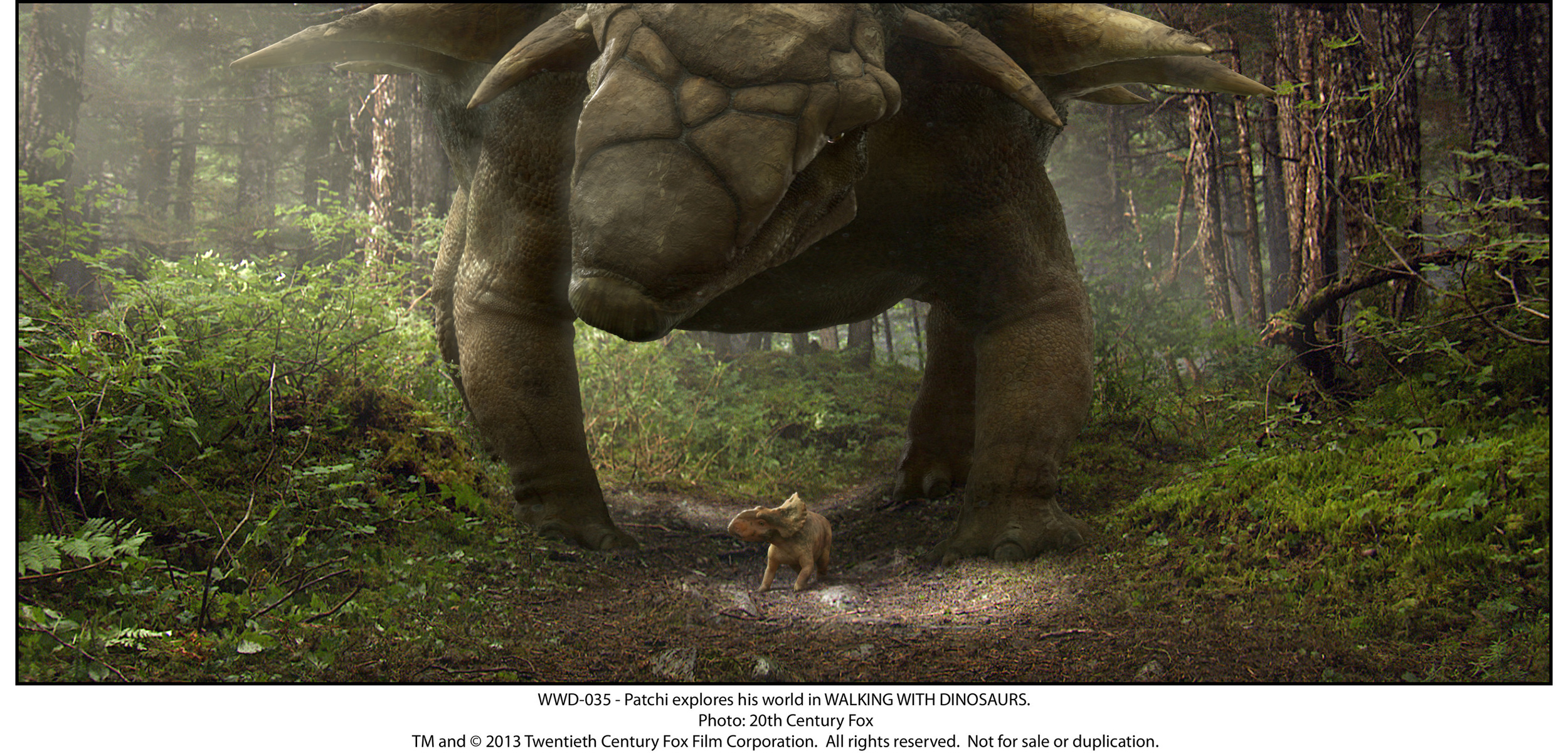 WWD-035 - Patchi explores his world in WALKING WITH DINOSAURS.