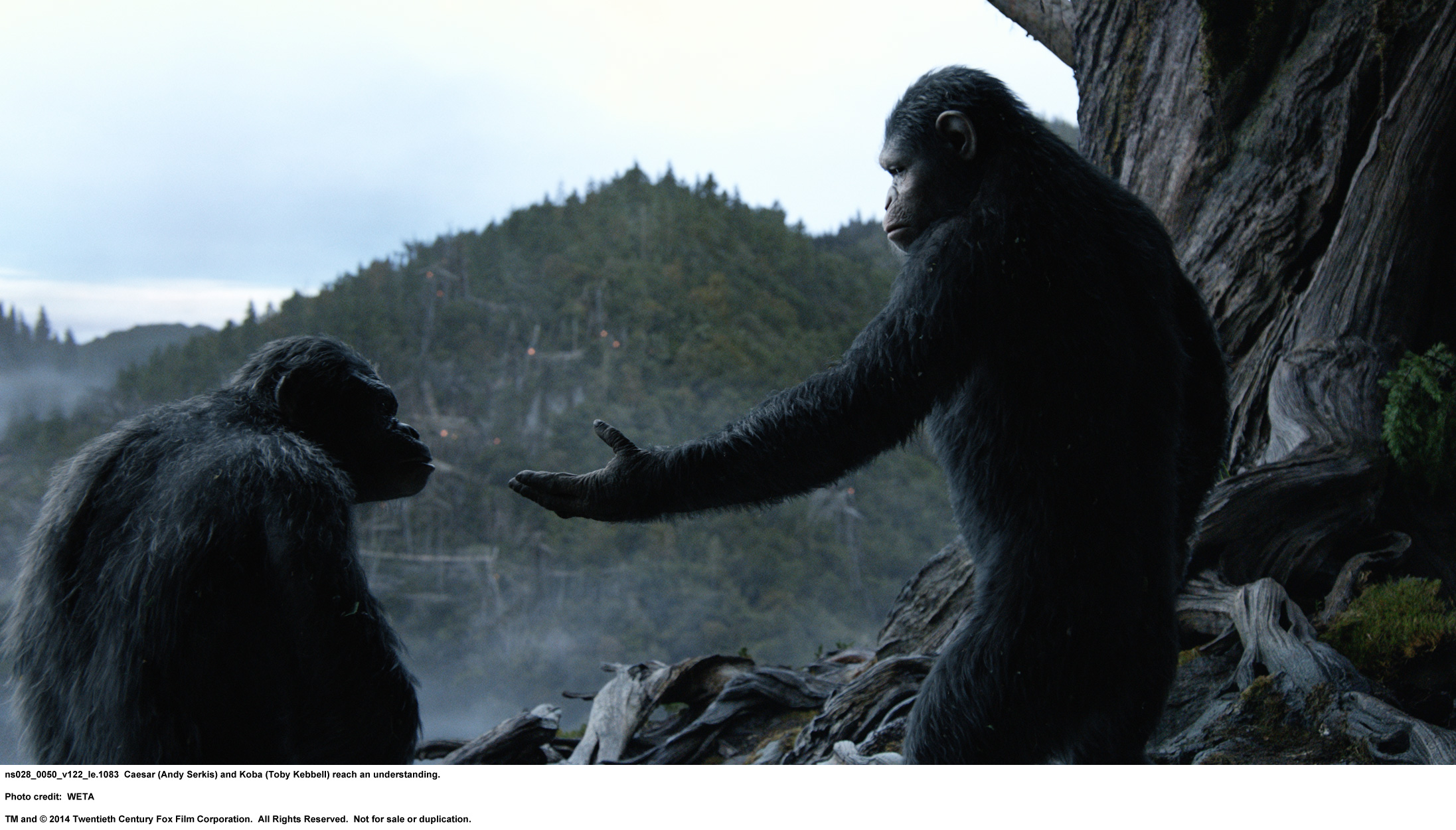 dawn-of-the-planet-of-the-apes-ns028_0050_v122_le-1083_rgb.jpg