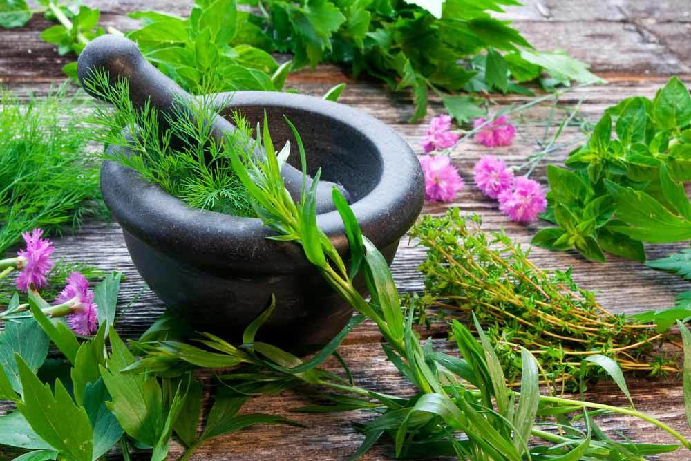 Herbs-Homegrown.jpg