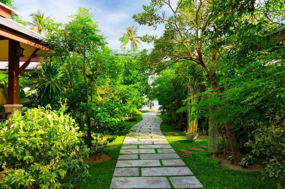 Tropical-Landscape-Design.jpg