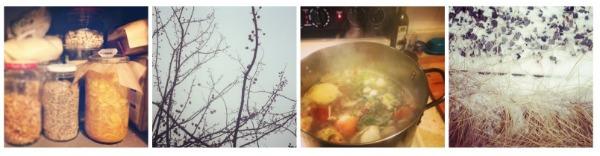 winter collage.jpg