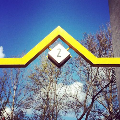 yellow.berlin.stephanielevy