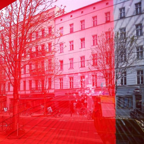 berlin.stephanielevy