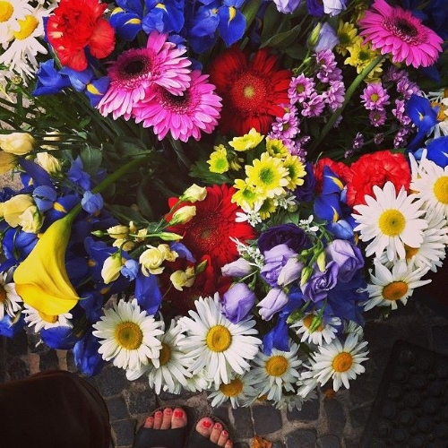 summer_flowers_stephanie_levy_berlin