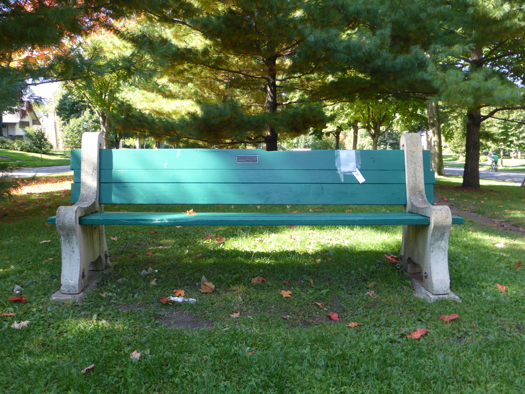 park bench beside a well-used running path