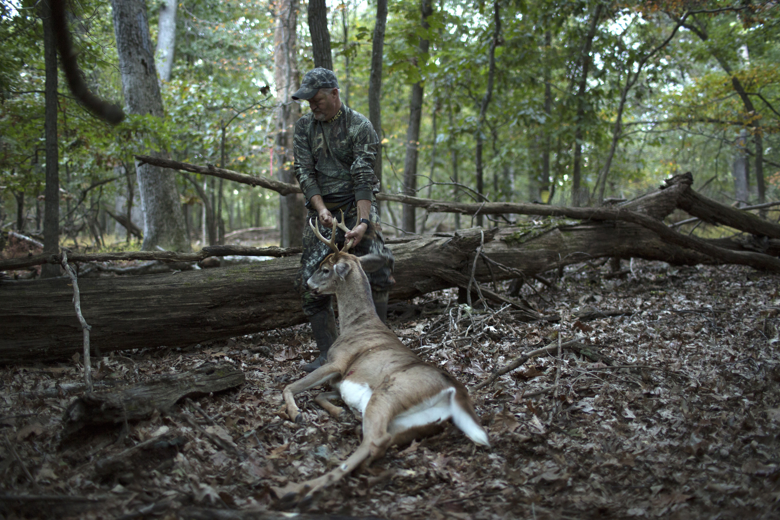 Tracy drags a recently killed deer before dressing it, near Eldersburg, Maryland.