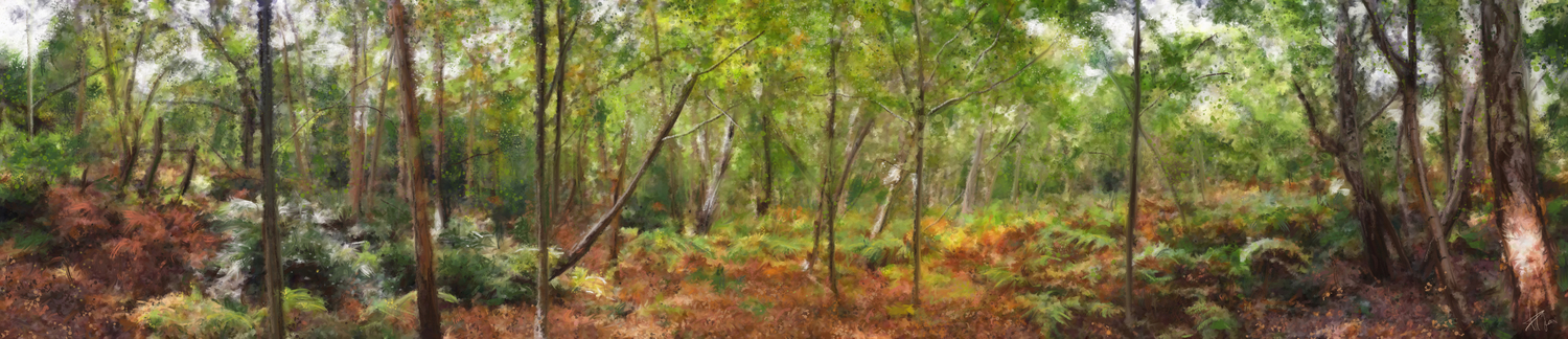 Wimbledon common-october.jpg.jpg