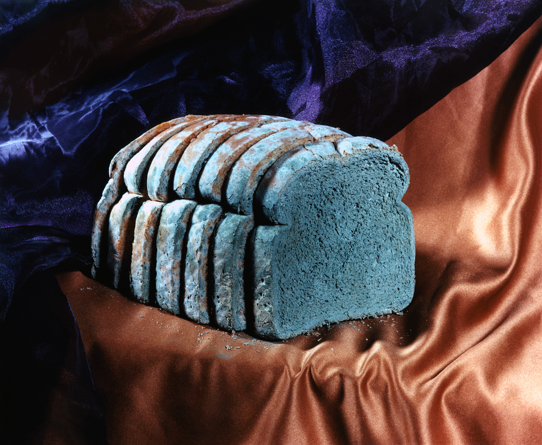 Moldy Bread, 2017