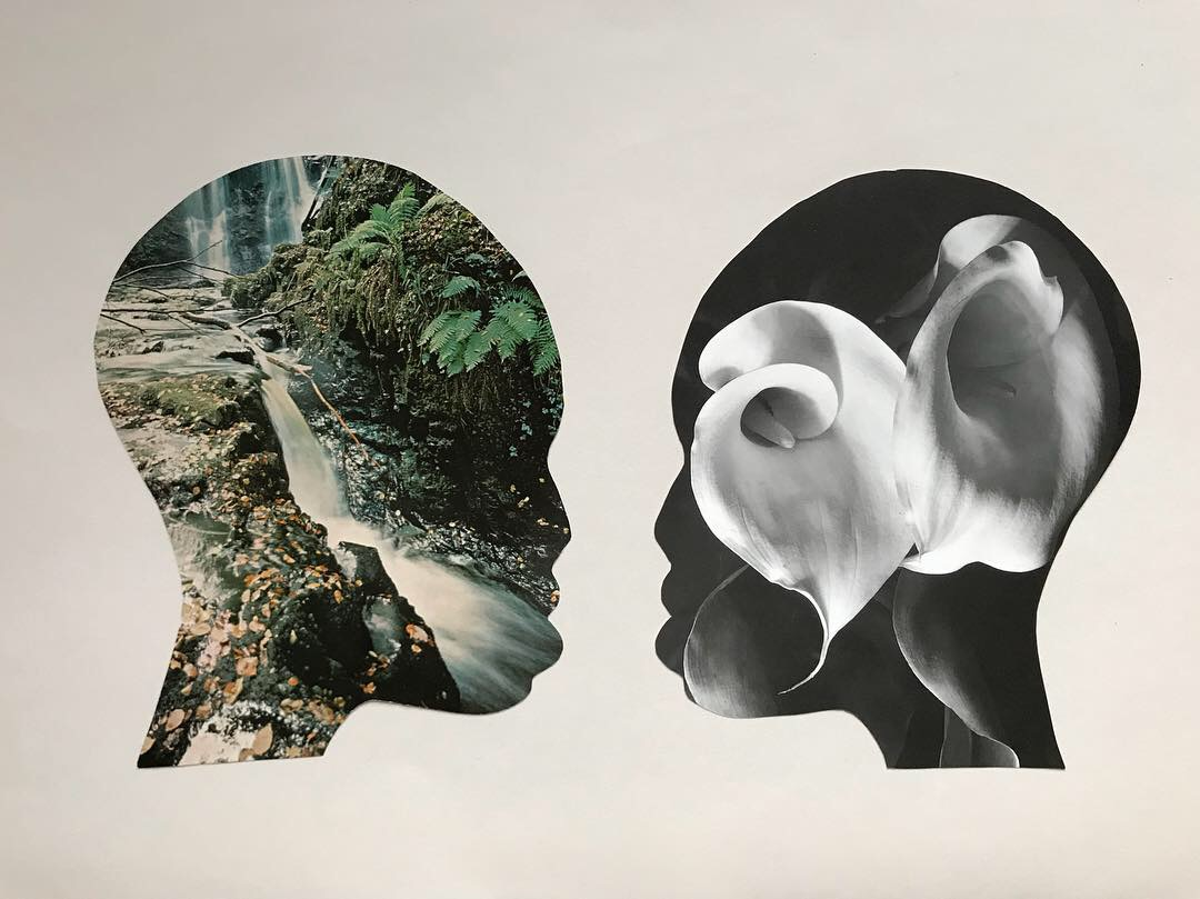 Symbiosis Collage, 2014, Shelby Stone