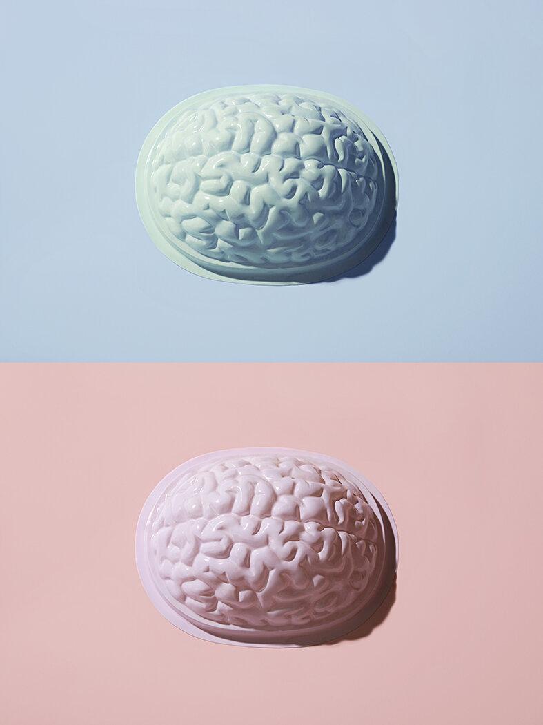 Brain photo by Natalie Jeffcott