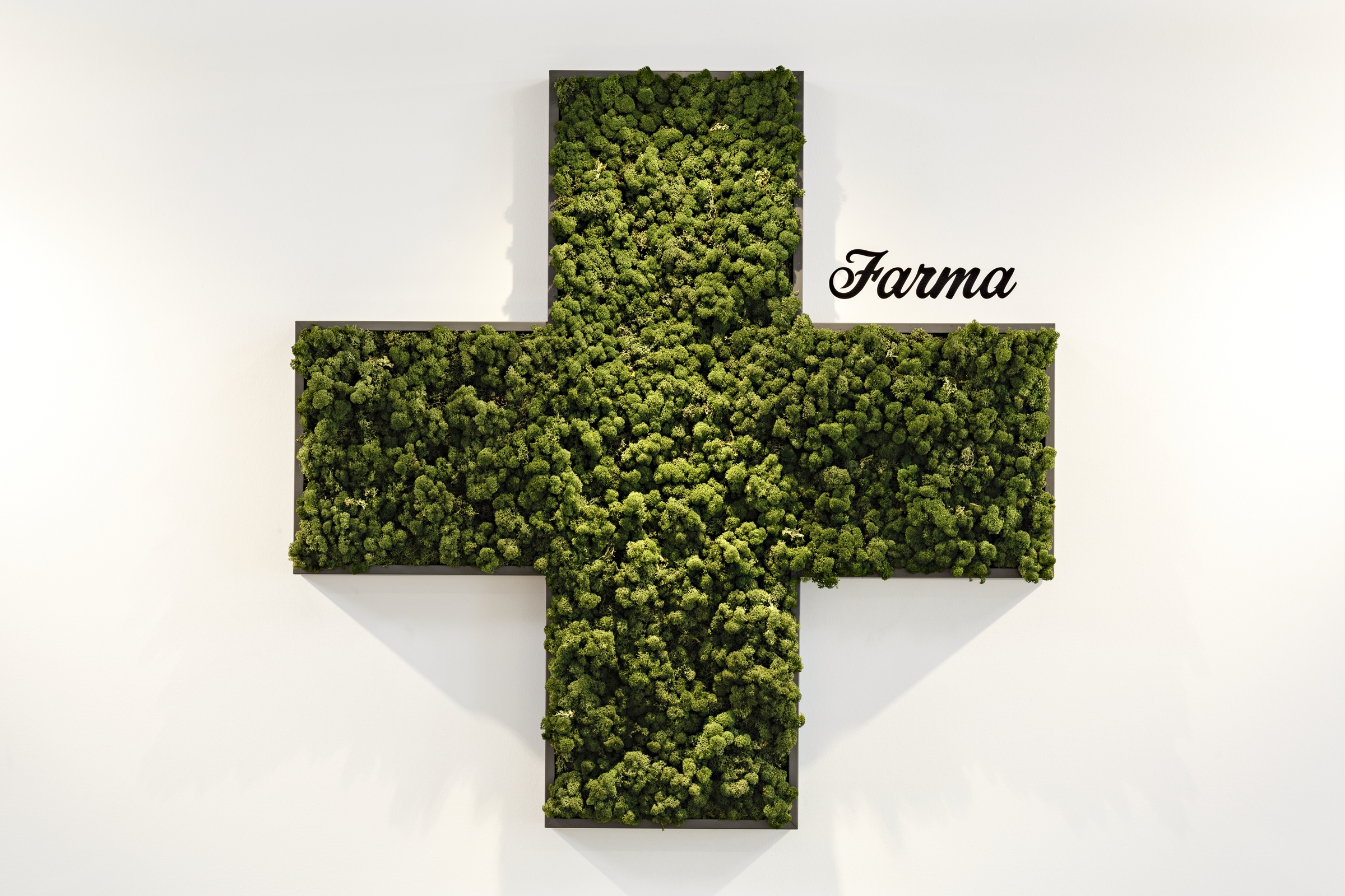 An iconic image:  a mossy green cross
