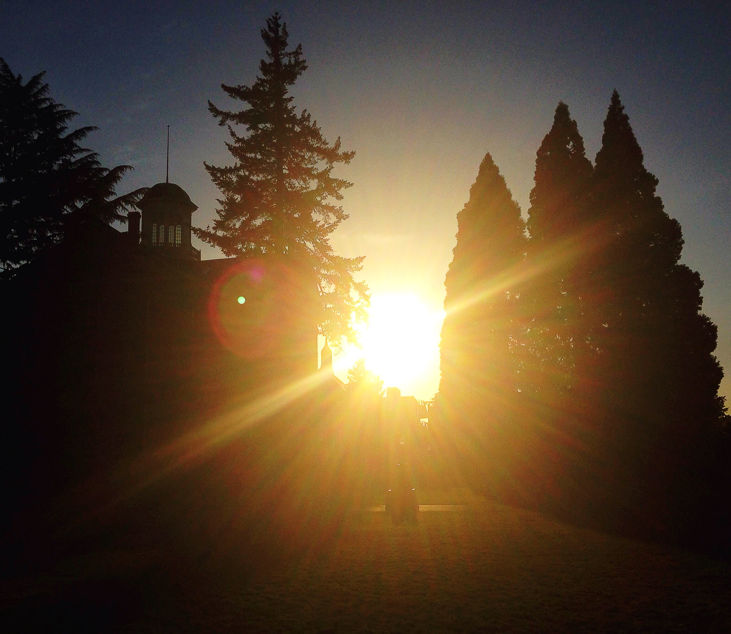Willamette's Waller Hall and the Star Trees are silhouetted in against May's setting sun.