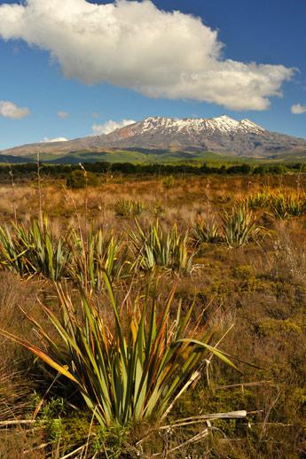 volcanic_r.jpg