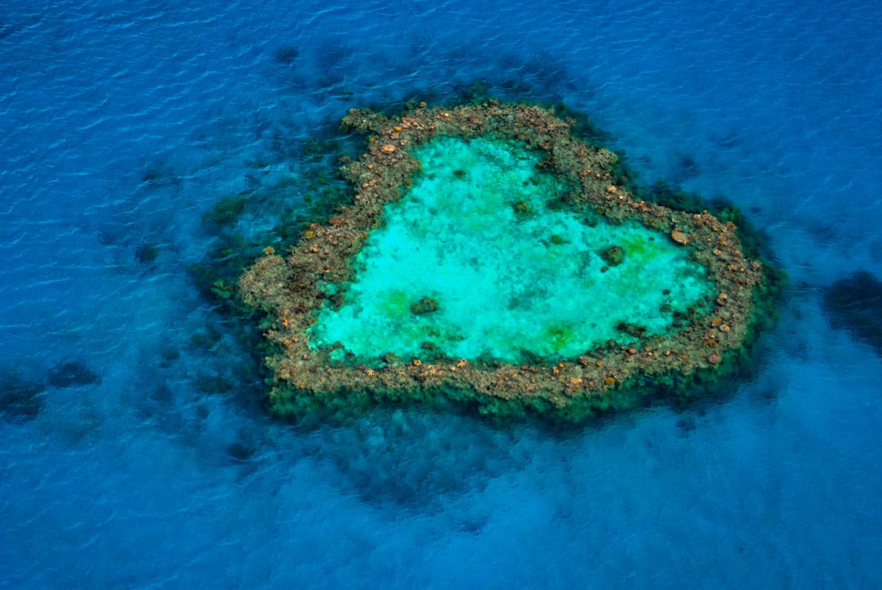 Heart Reef, Great Barrier Reef, Qld