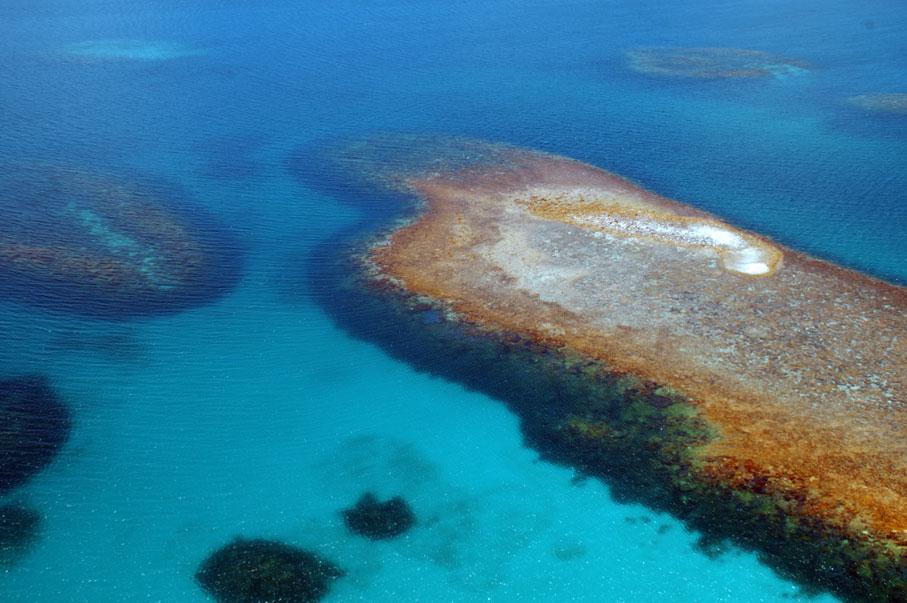 Abrolhos Reef, Western Australia