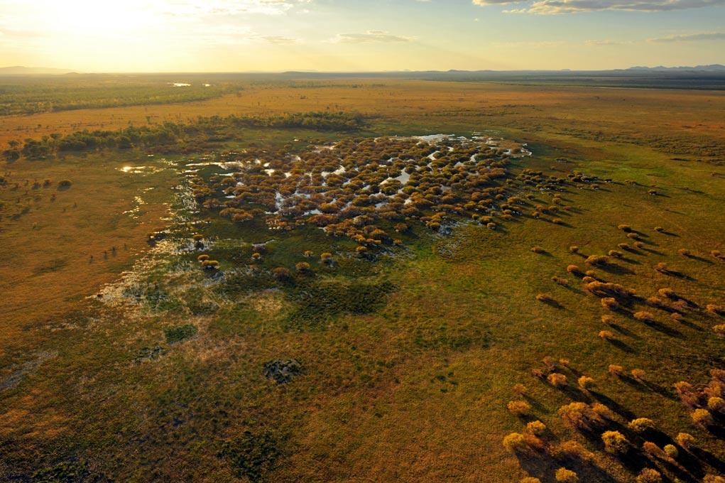 Marshland, the Kimberley, WA