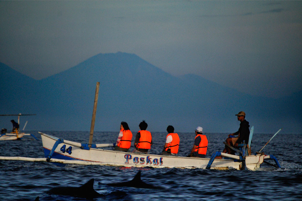 Javanese volcano and Dolphins