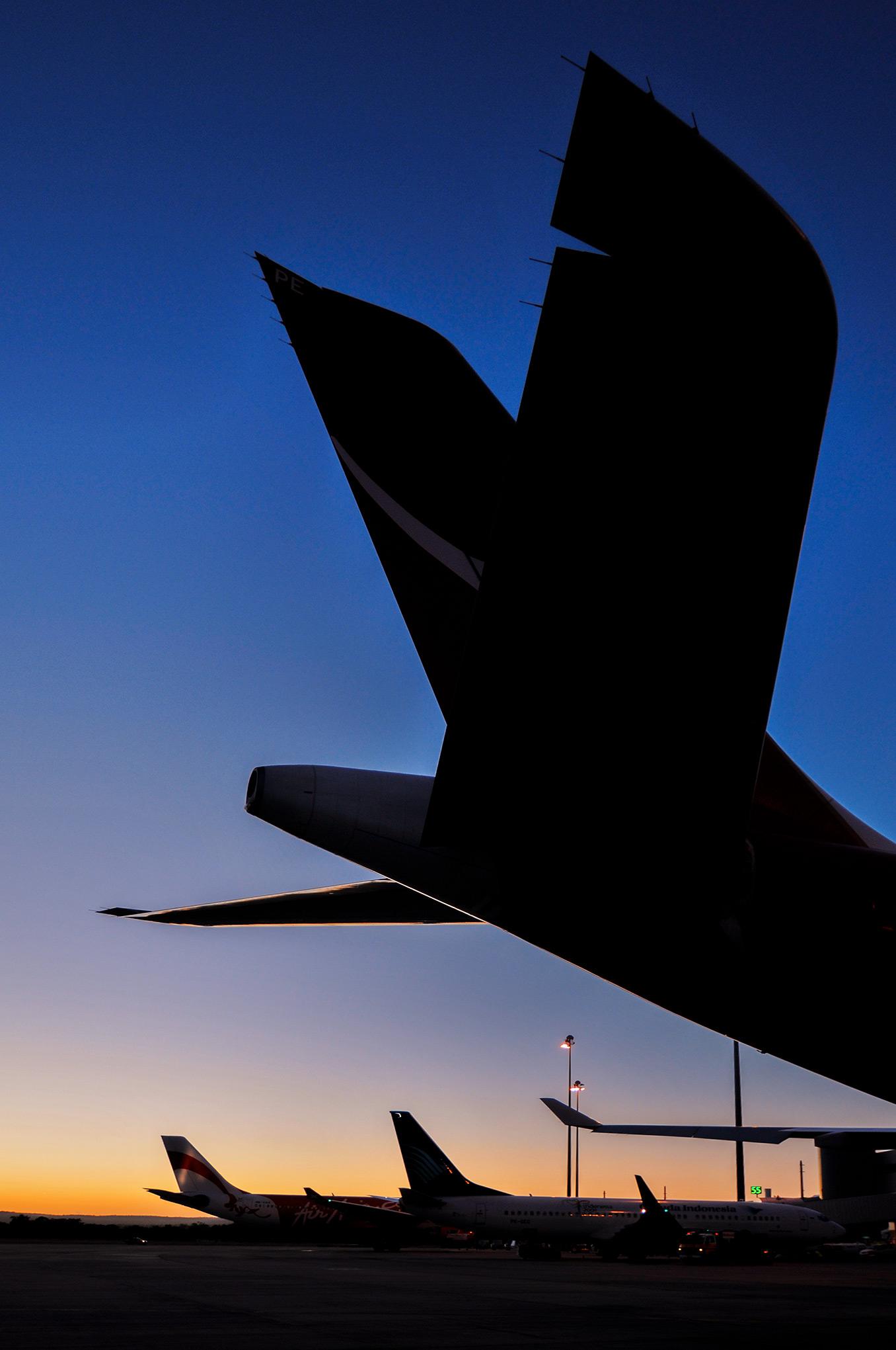 aircraft_tails_dusk_portrait.jpg