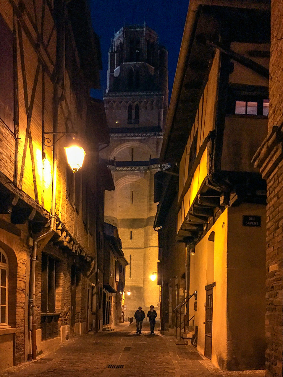 Castelviel and the cathedral, Albi
