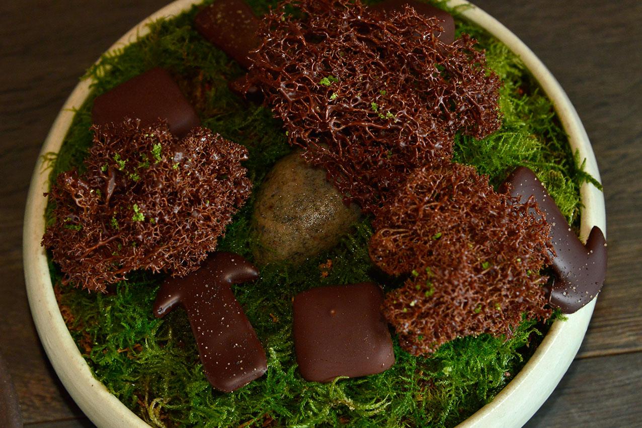 chocolate_moss_noma.jpg