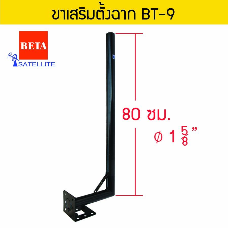 BETA BT-9 Angular Extension Pole