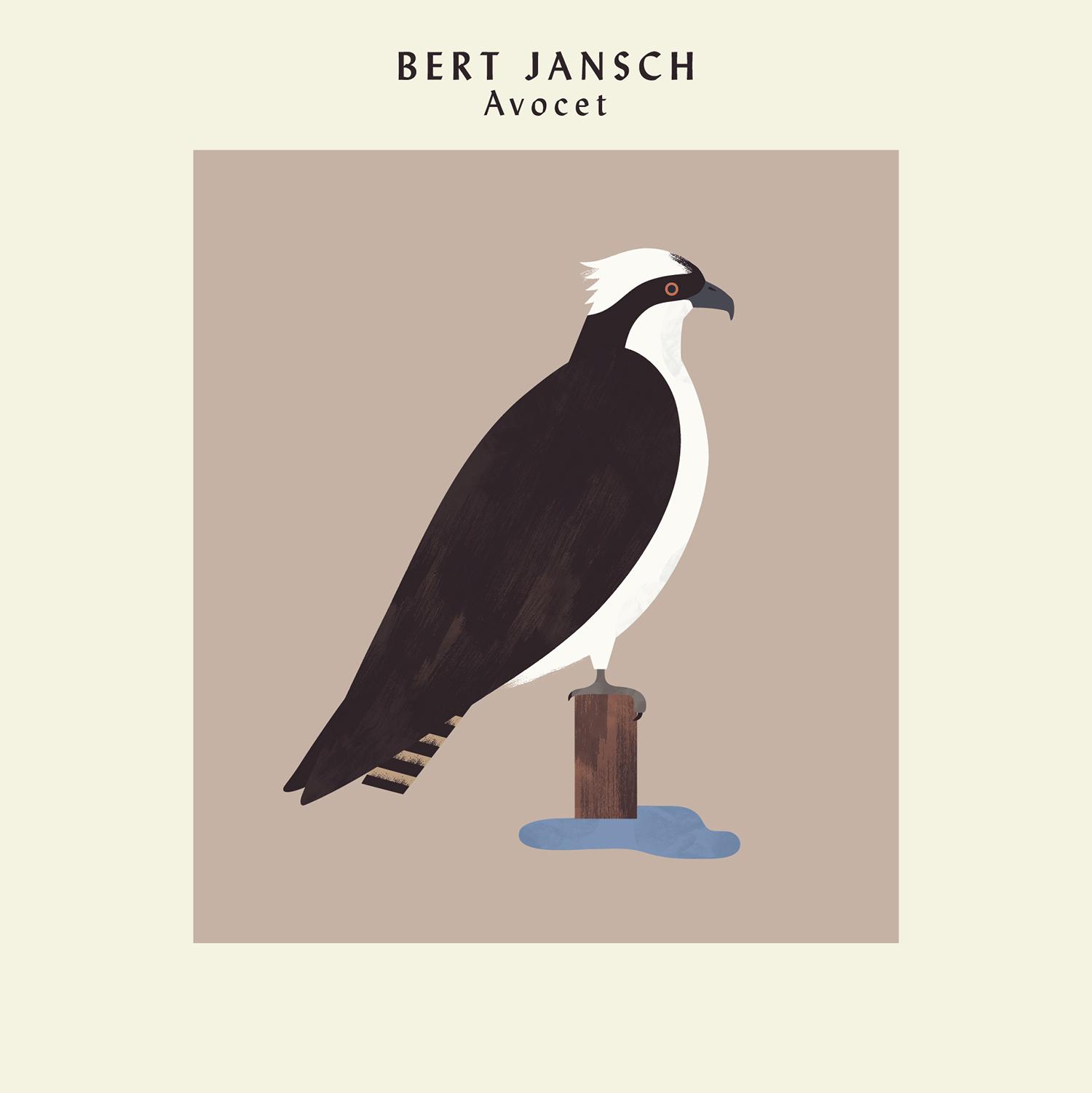 hannah-alice-bert-jansch-osprey-record-bird-illustration-1.jpg
