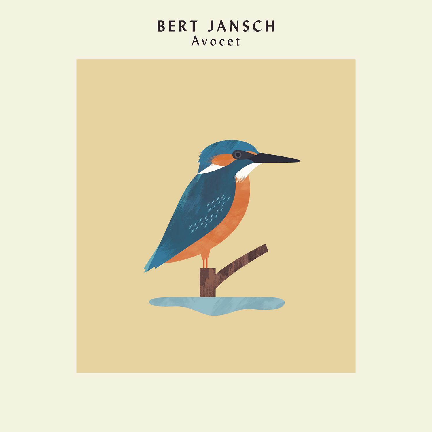 hannah-alice-bert-jansch-kingfisher-record-bird-illustration-1.jpg