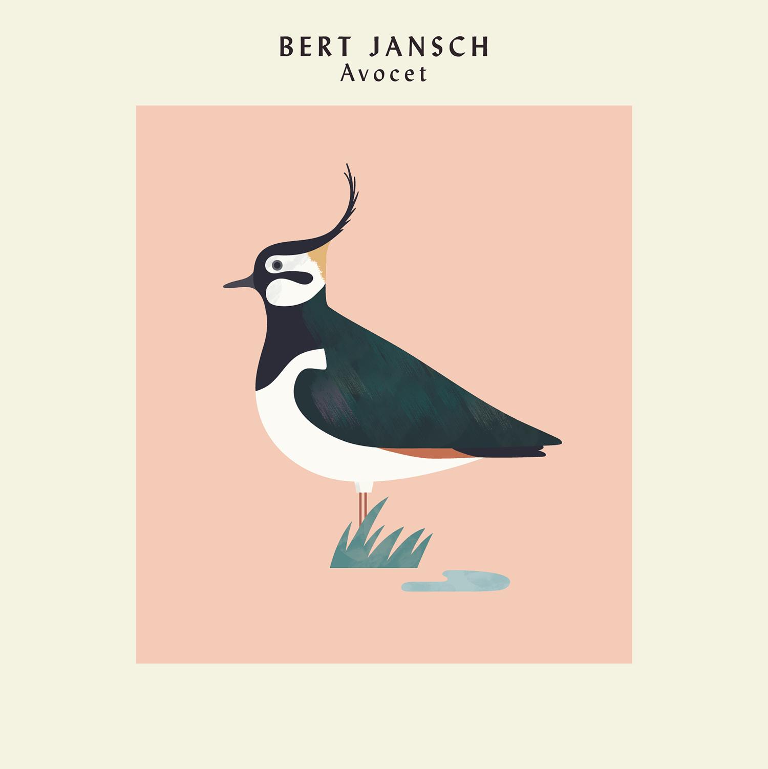 hannah-alice-bert-jansch-lapwing-record-bird-illustration.jpg