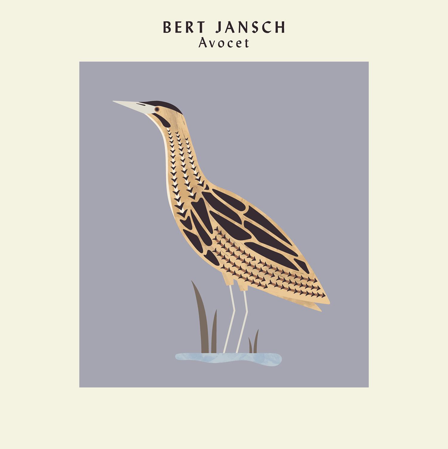 hannah-alice-bert-jansch-bittern-record-bird-illustration.jpg
