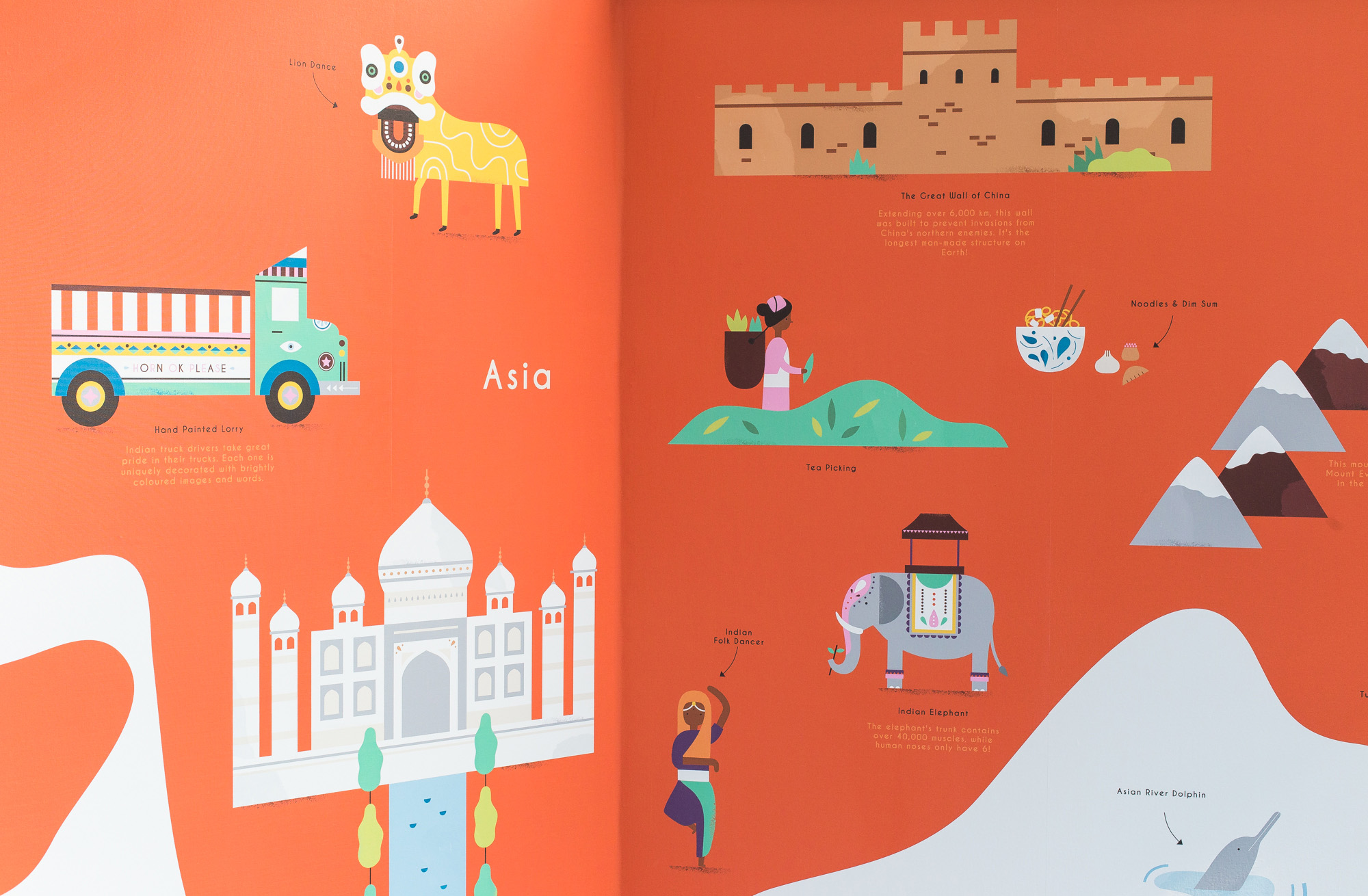 hannahalice-illustration-spacedesign-world-map-grazebrookprimaryschool-mural-asia-wallpaper.jpg