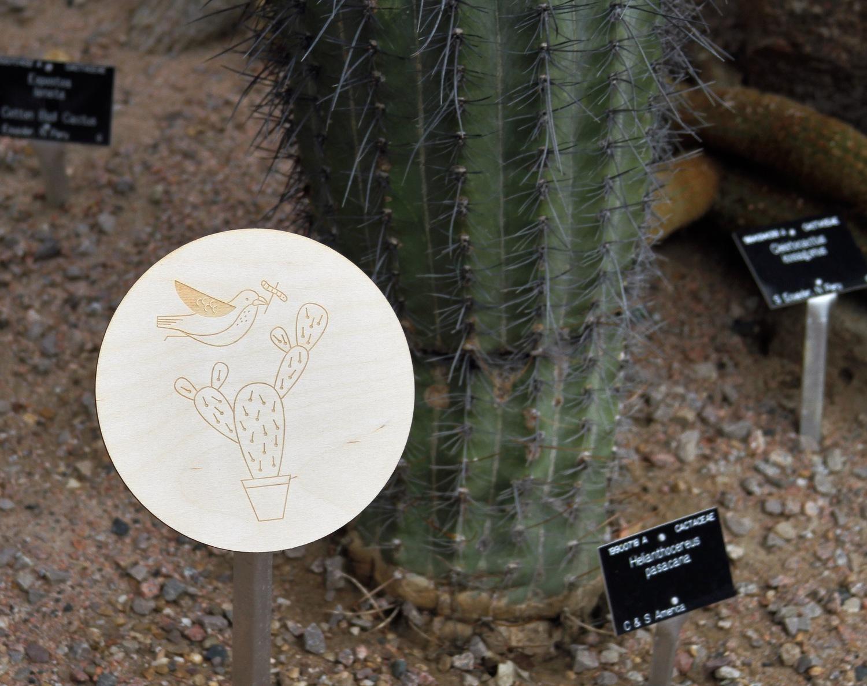 hannahalice-illustration-theweirdandwonderfulworldofplants-cambridgeuniversitybotanicgarden-summer-trails-plants-facts-guides-children-activities-engraved-sign.jpg
