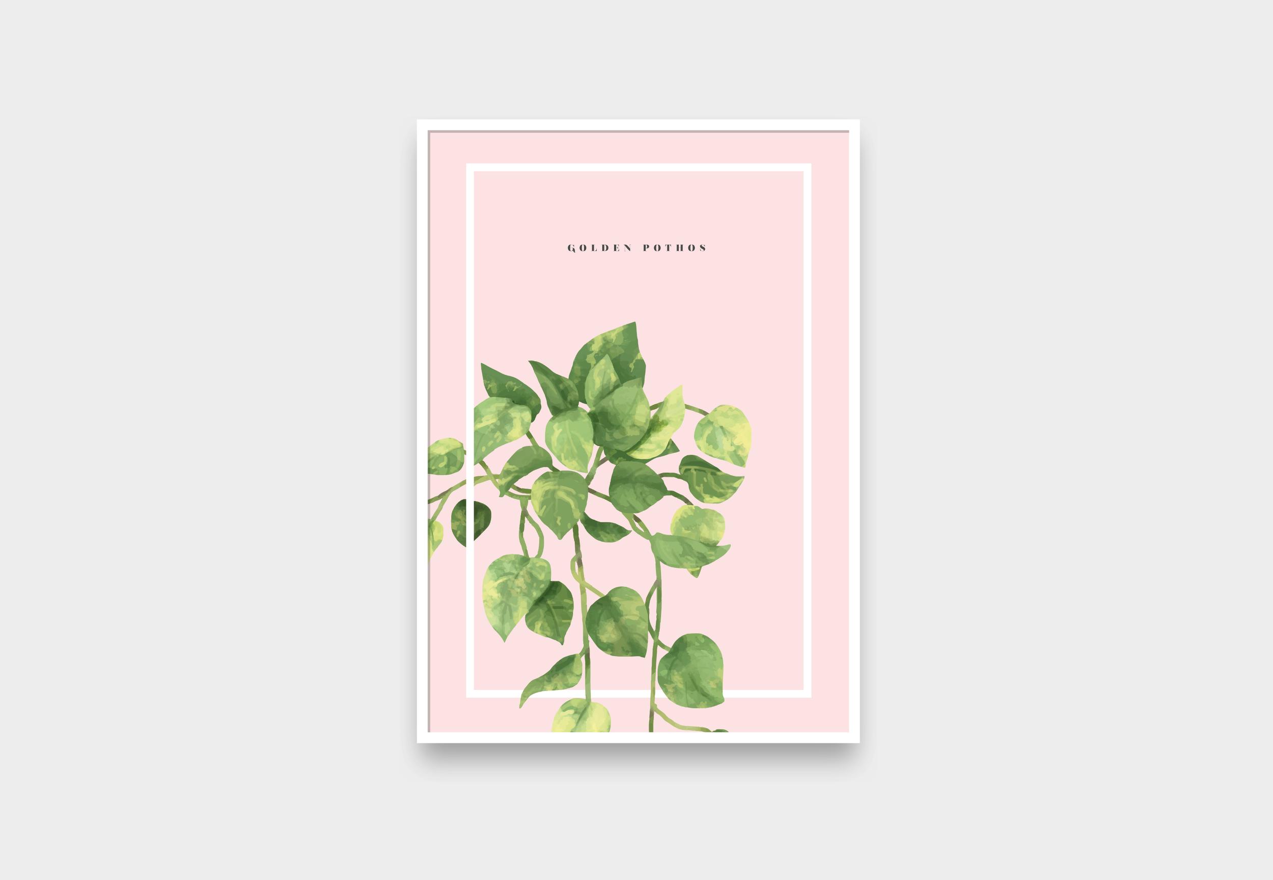 gommashop_afiches_plantas1.png