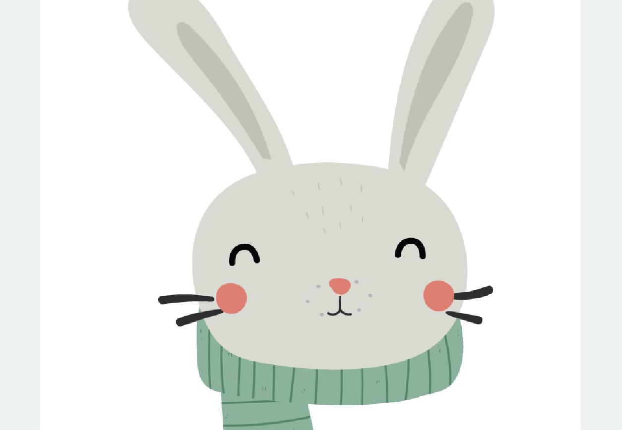 gommashop_rabbit_zoom-01.png