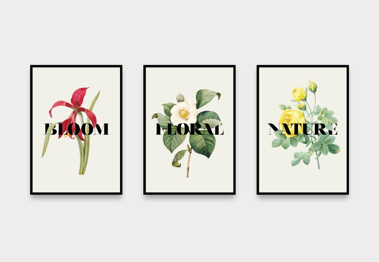 Flowers - Cómpralos individuales o en grupo