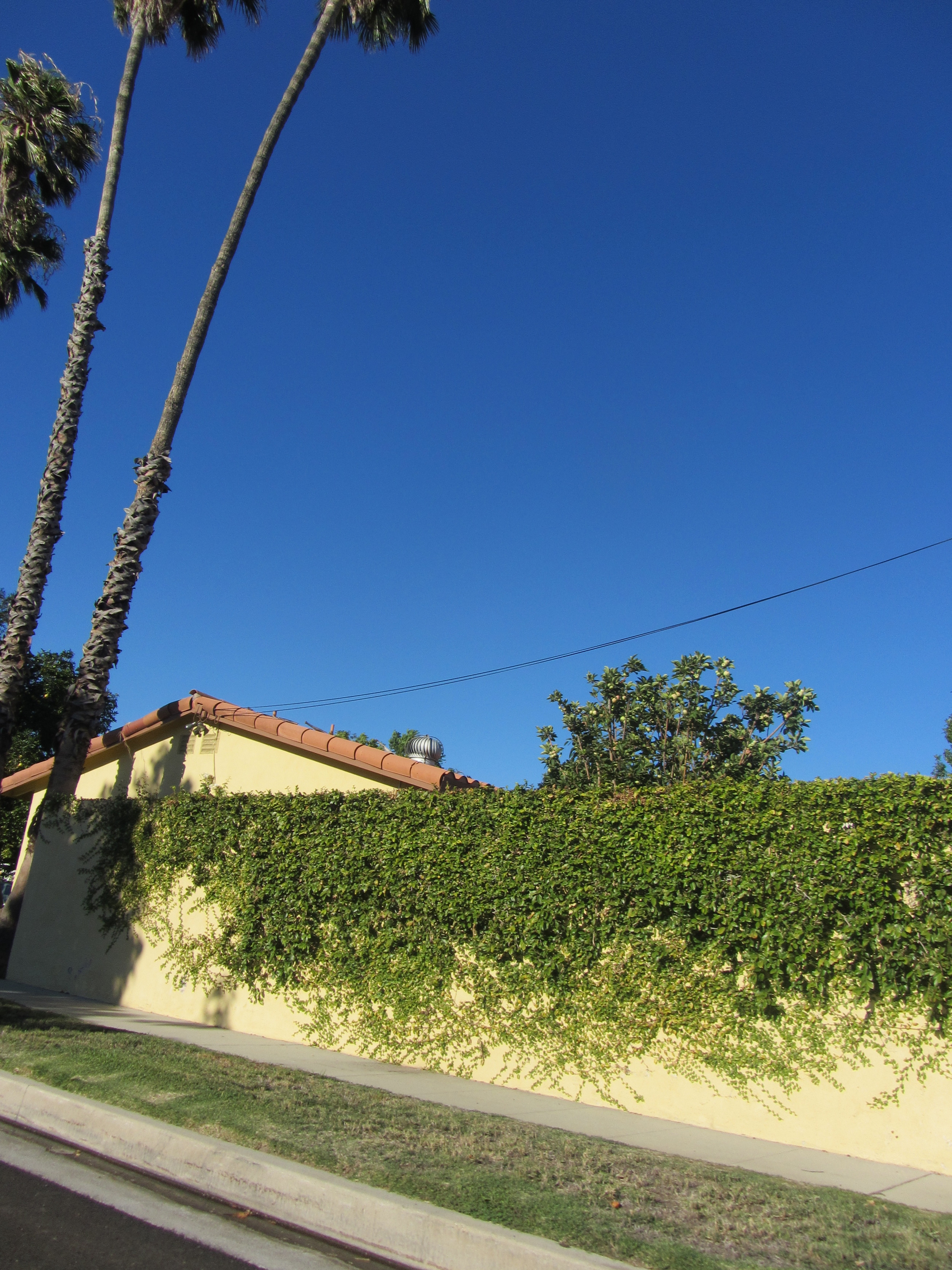 California sidewalk.jpg