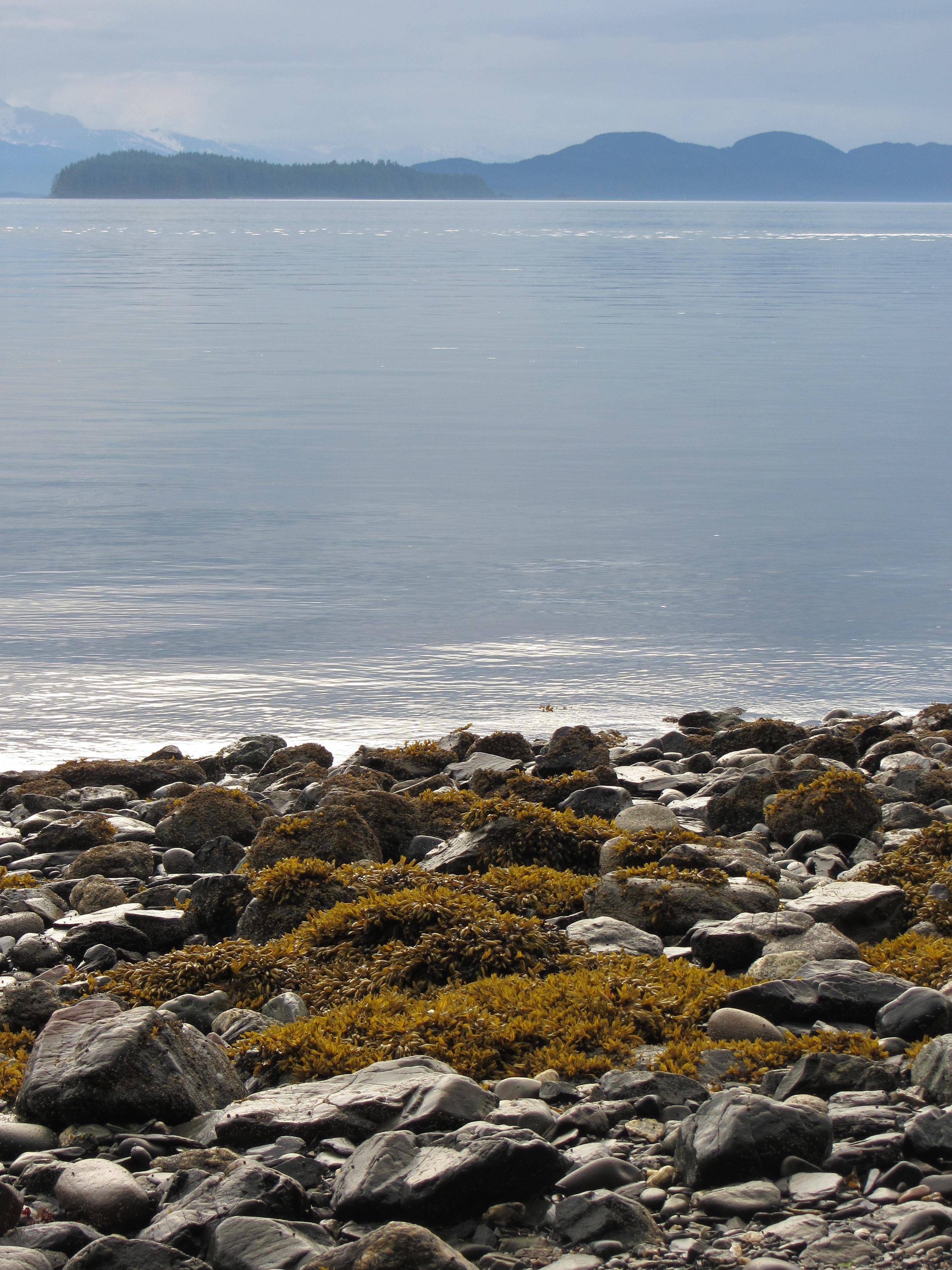 North Douglas beach.jpg