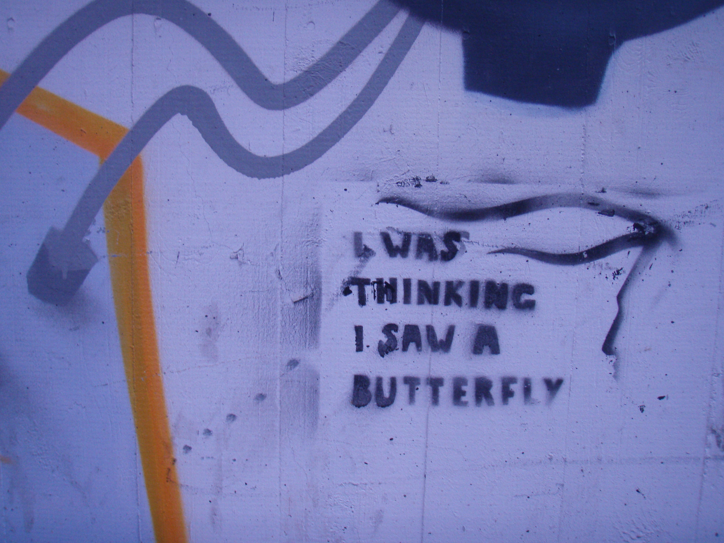 Swiss butterfly grafitti.jpg