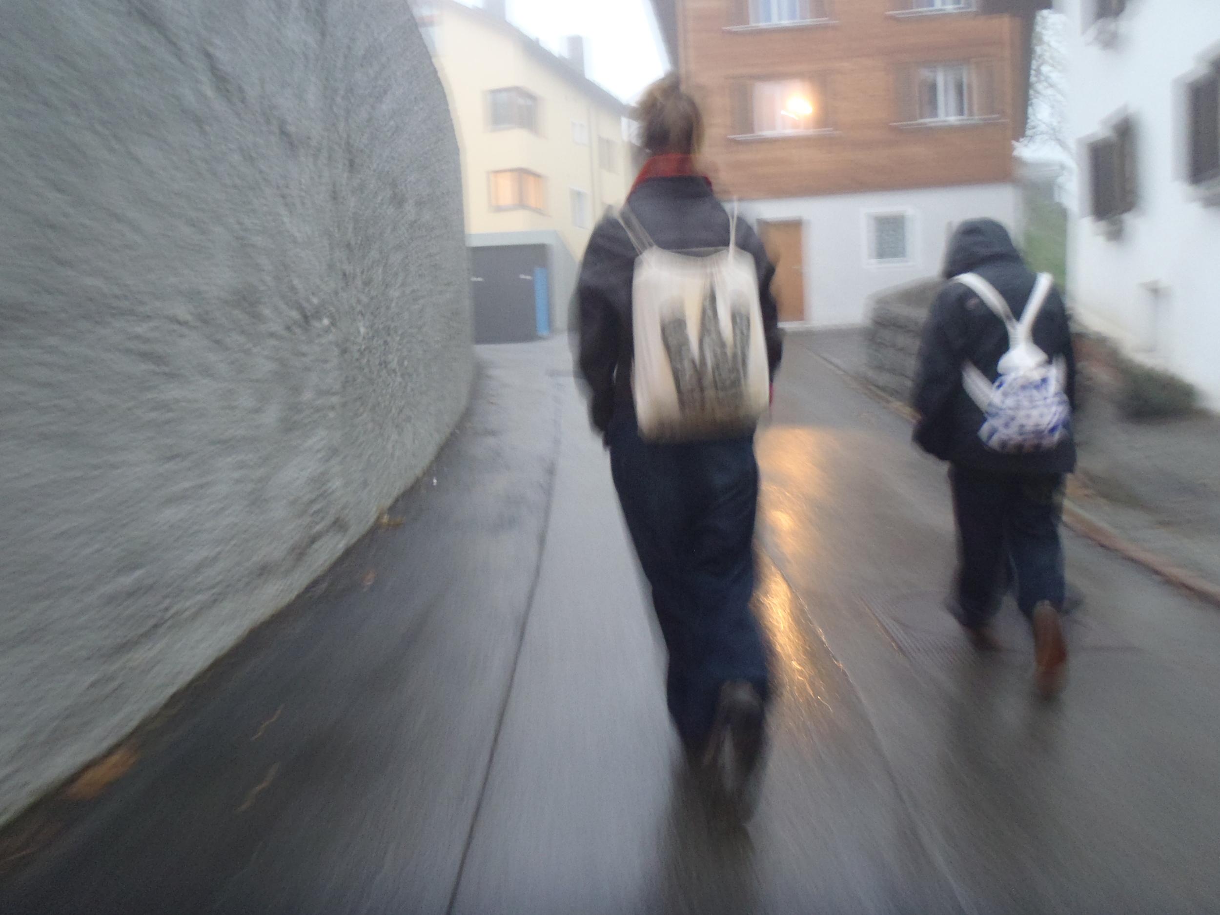 Swiss walk.jpg