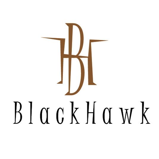 BLACKHAWK LOGO.jpg