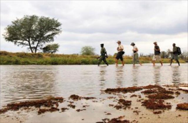 Primal-Pathways-Luangwa-Walking-Safari-River-Crossing.jpg